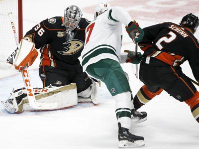 Wild Ducks Hockey