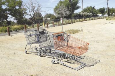 CTY0223 Shopping Carts