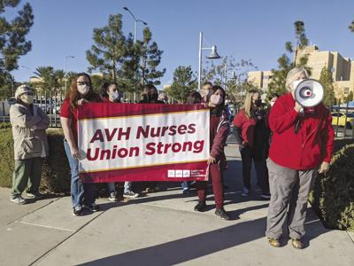 AVH nurses