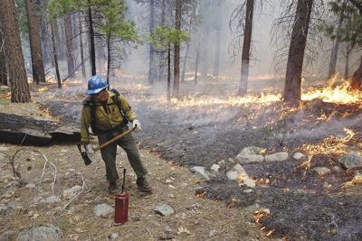 Wildfires Prescribed Burns