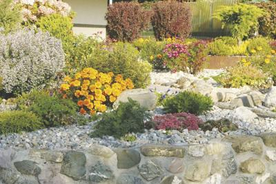 Pwd Message Make Your Lawn More Water Efficient News Avpress Com
