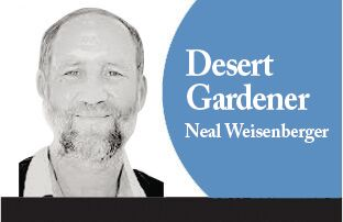 Neal Weisenberger