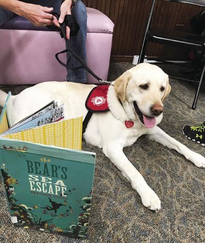 Bark and Books