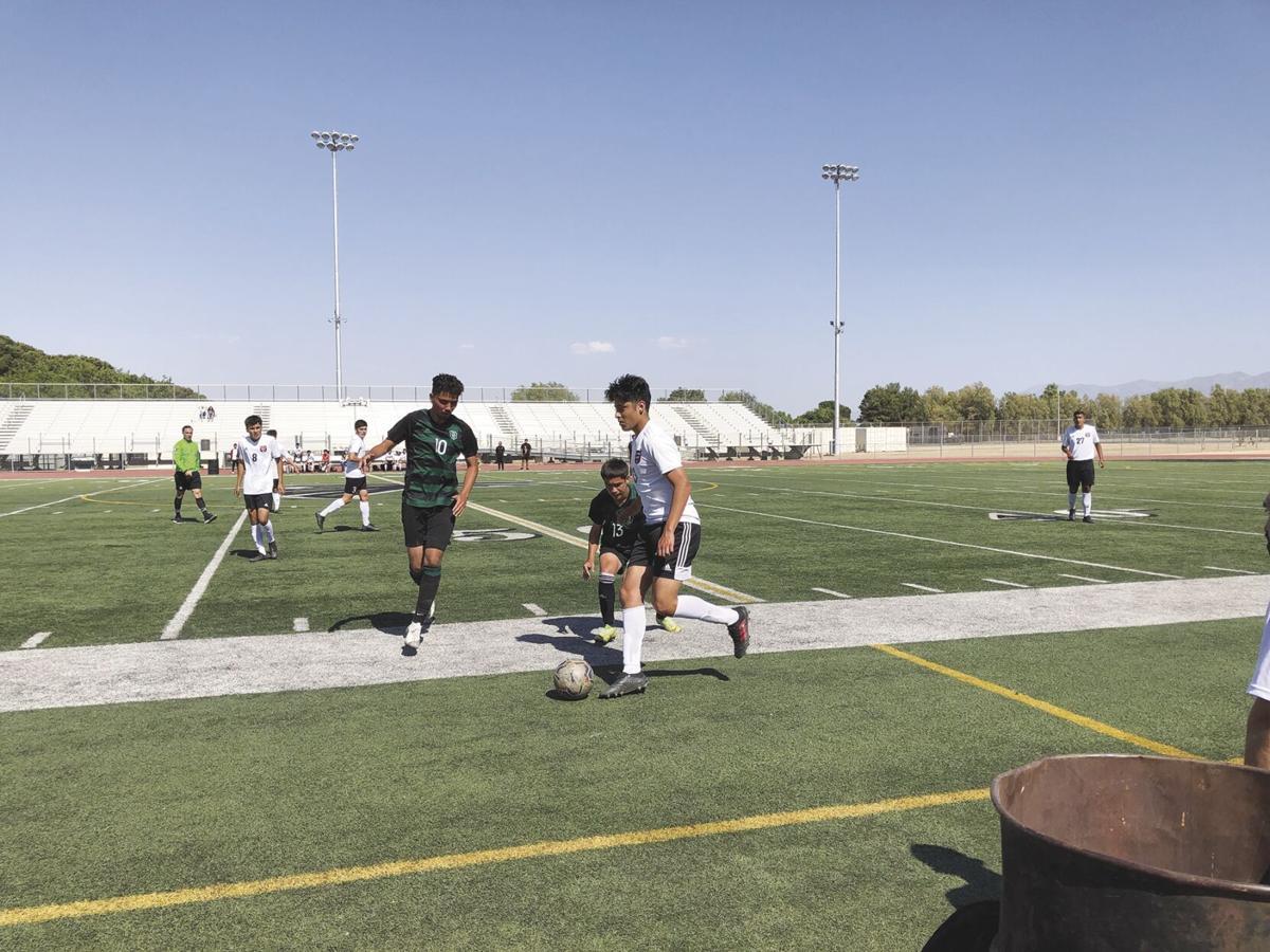 Palmdale Soccer 1