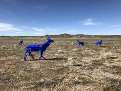 Blue Antelope