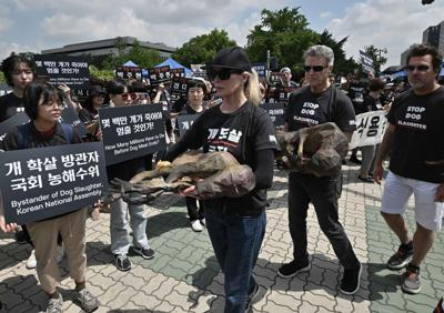 Kim Basinger joins protest against the dog meat trade in Seoul