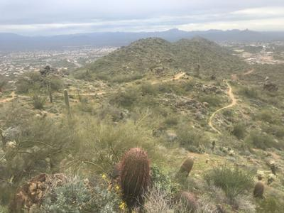 Fountain Hills McDowell Preserve