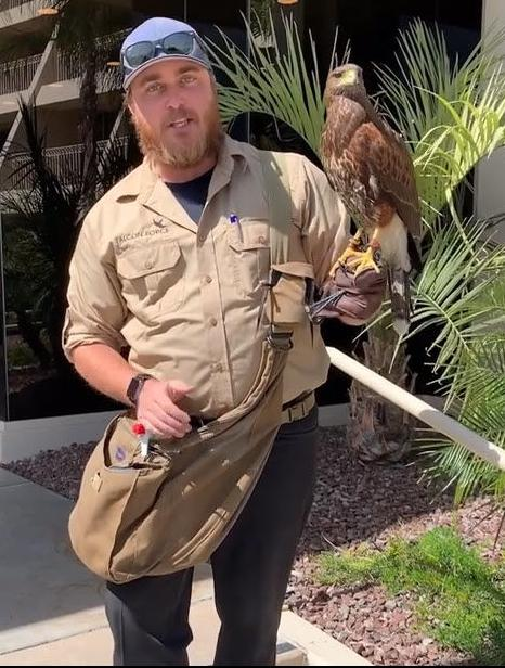 Brian Wood with Diablo the Harris Hawk