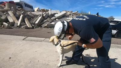 CANINE SEARCH AND RESCUE1