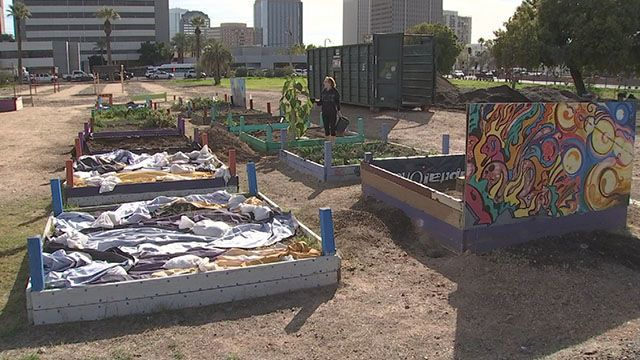 Phoenix urban garden gets new lease at different location
