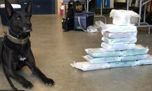 K9 drug bust in Ash Fork leads to million dollar cocaine and heroin seizure