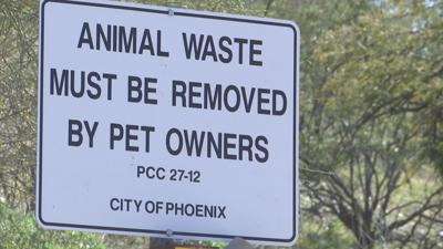 Pet Owners are Misbehaving at Dreamy Draw Park