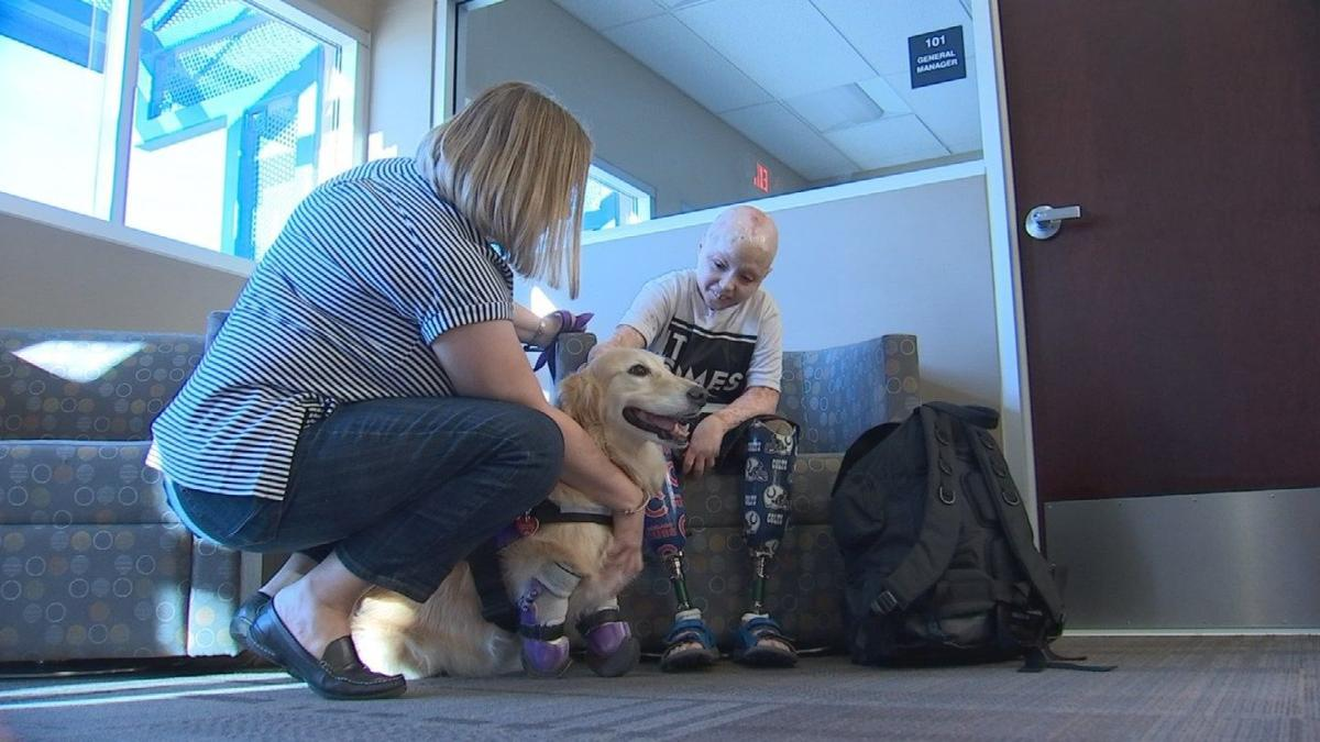 10-year-old burn victim meets rescue dog 'just like him' in Goodyear