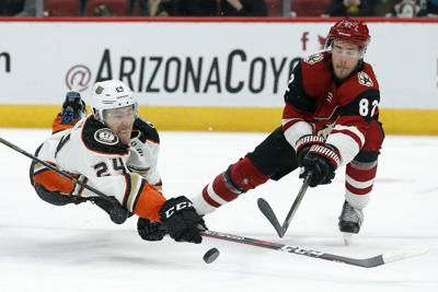 Yotes vs. Ducks