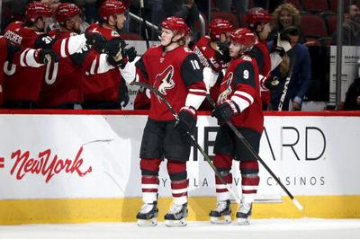 Ducks Coyotes Hockey