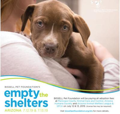 Since shelters are so overcrowded this week due to last week's Fourth of July fireworks, Bissell is covering the cost of adoption fees on Friday, July 12 and Saturday, July 13.
