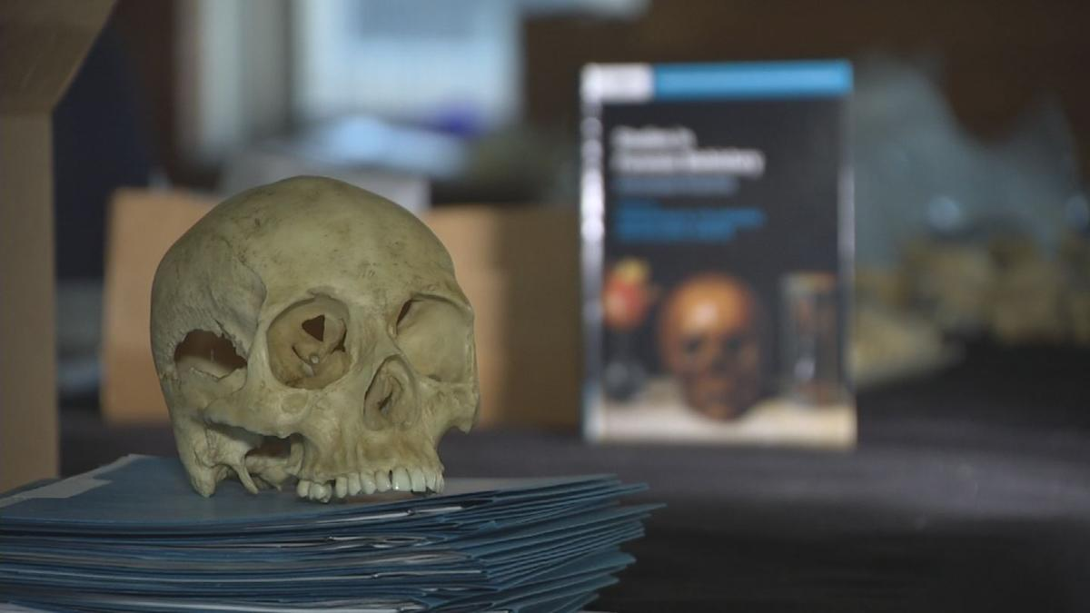 Using bones to solve mysteries; ASU researchers at the forefront of 'biohistory'