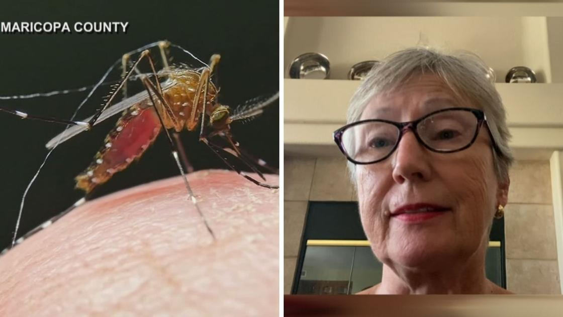 Ahwatukee woman finds out she has West Nile after donating at blood drive - AZFamily