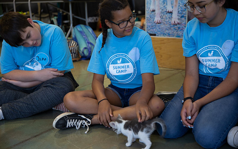 Turning children into animal caregivers at summer camp