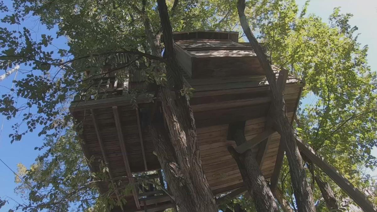 Treehouse AirBnb 2
