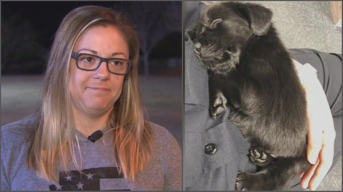 Scottsdale cop adopts puppy she rescued, anonymous donor helped with fees