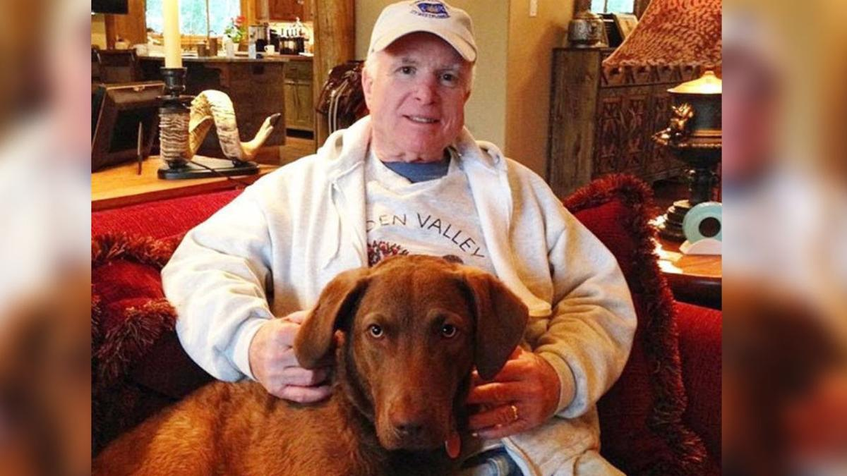 Sen. John McCain's family is mourning the loss of his beloved dog, Burma