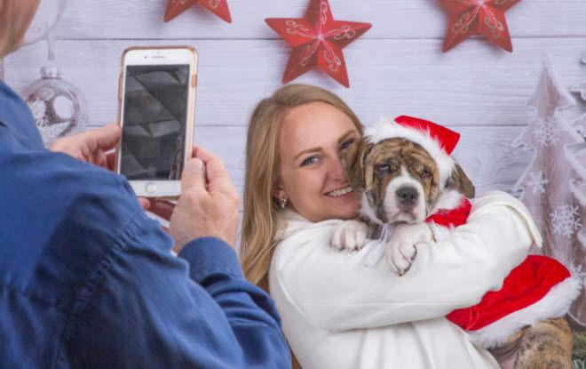 'Deck the Paws' brings furry friends to your holiday festivities