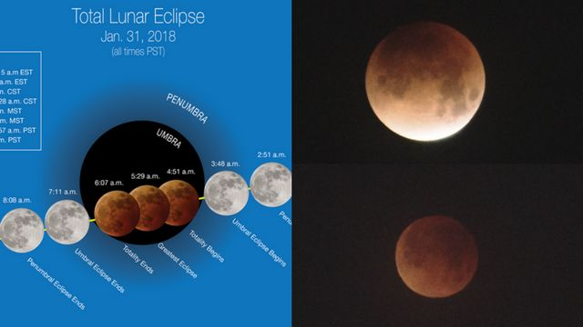 Moon madness! 'Super blue blood moon' stuns over morning sky
