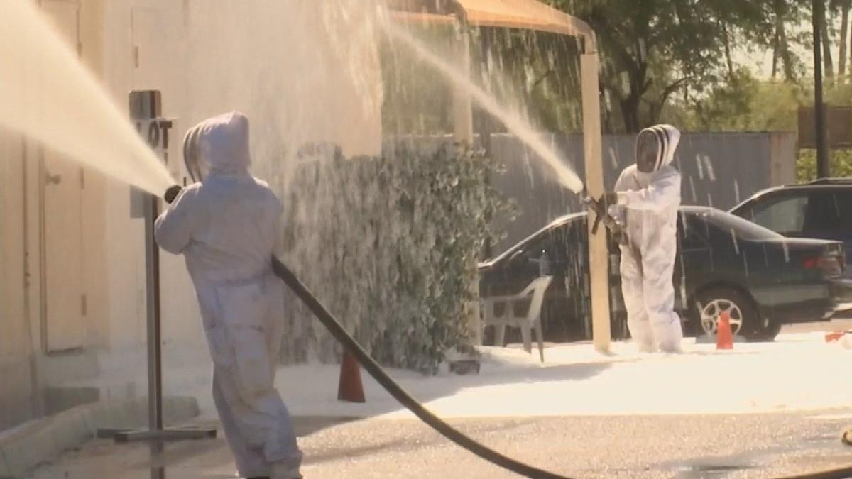 Bees attack multiple people near 32nd Street & McDowell Road