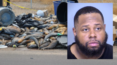 Suspect arrested in illegal dumping