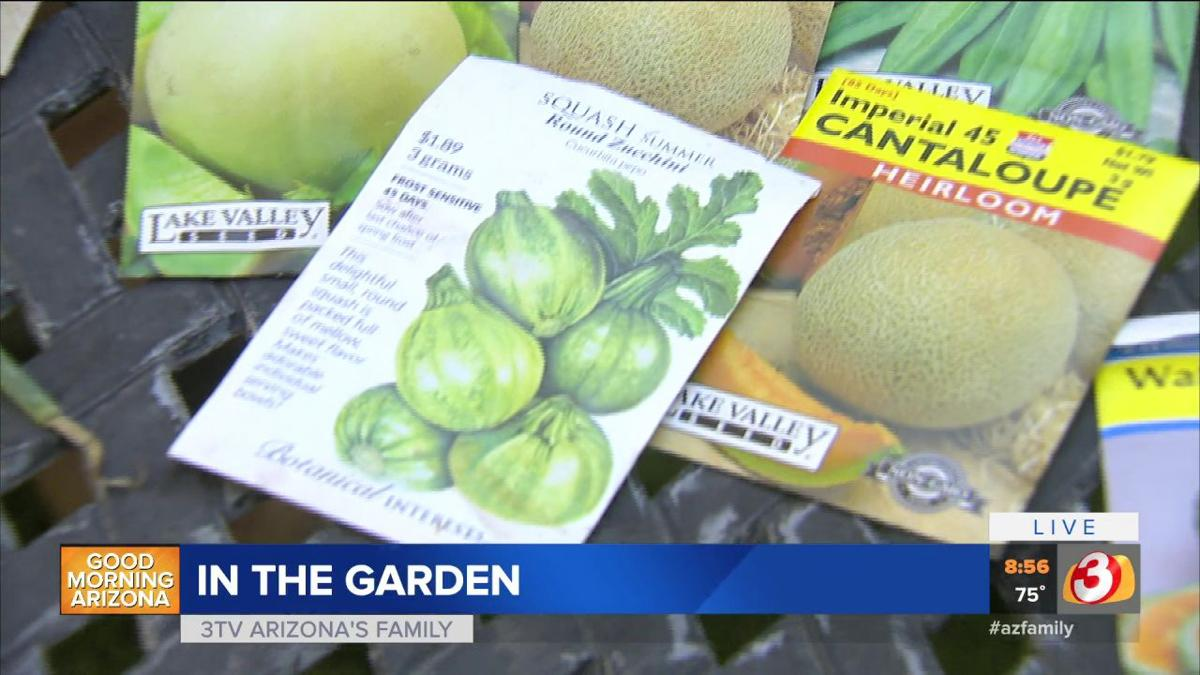 Earth Day Ideas To Conserve Your Yard Good Morning Arizona Azfamily Com The number of deaths linked to cantaloupes contaminated with the listeria monocytogenes bacteria has risen to 25, the centers for disease control and prevention said tuesday. azfamily