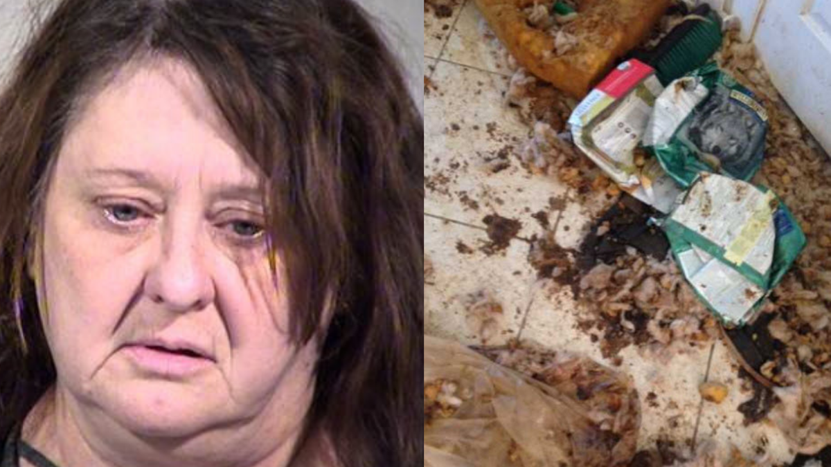 We're seeing out first photos from inside the house of the woman accused of animal cruelty
