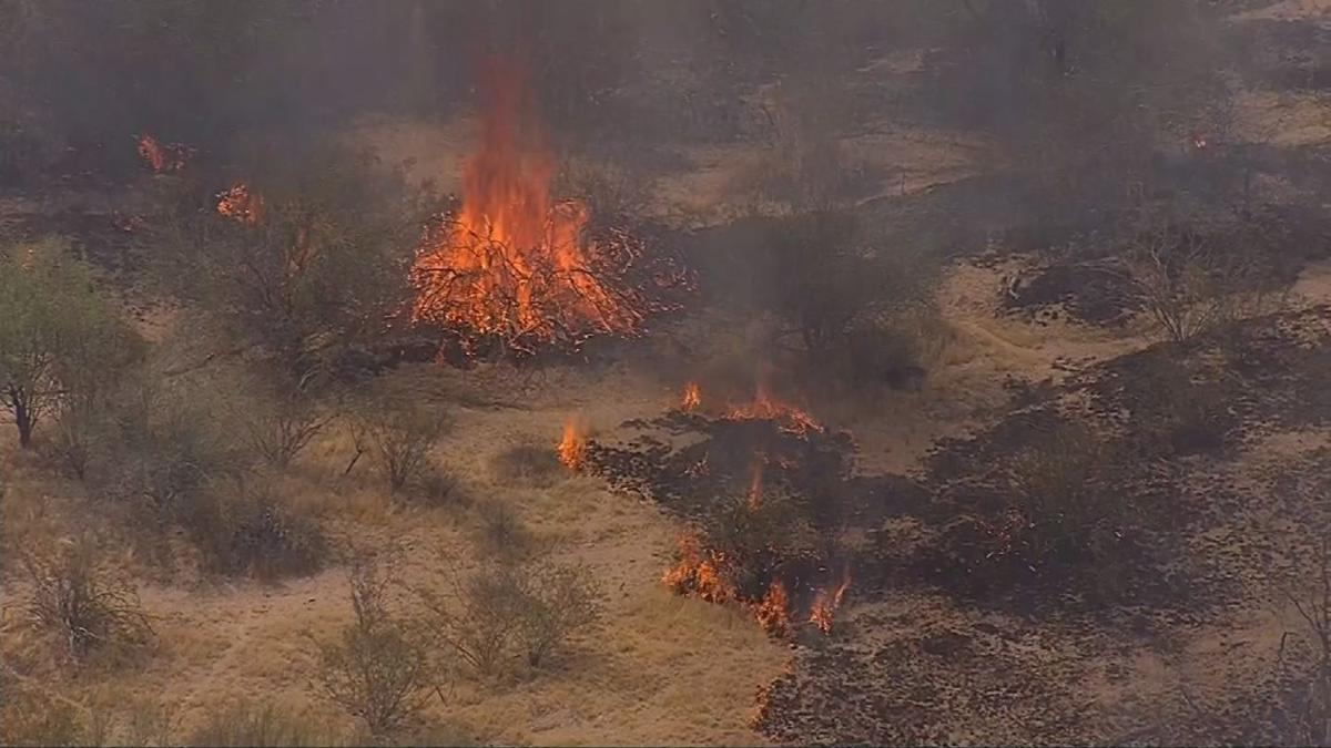 The flames sparked in a desert area near Pinnacle Peak and Scottsdale Road at around 9 a.m.