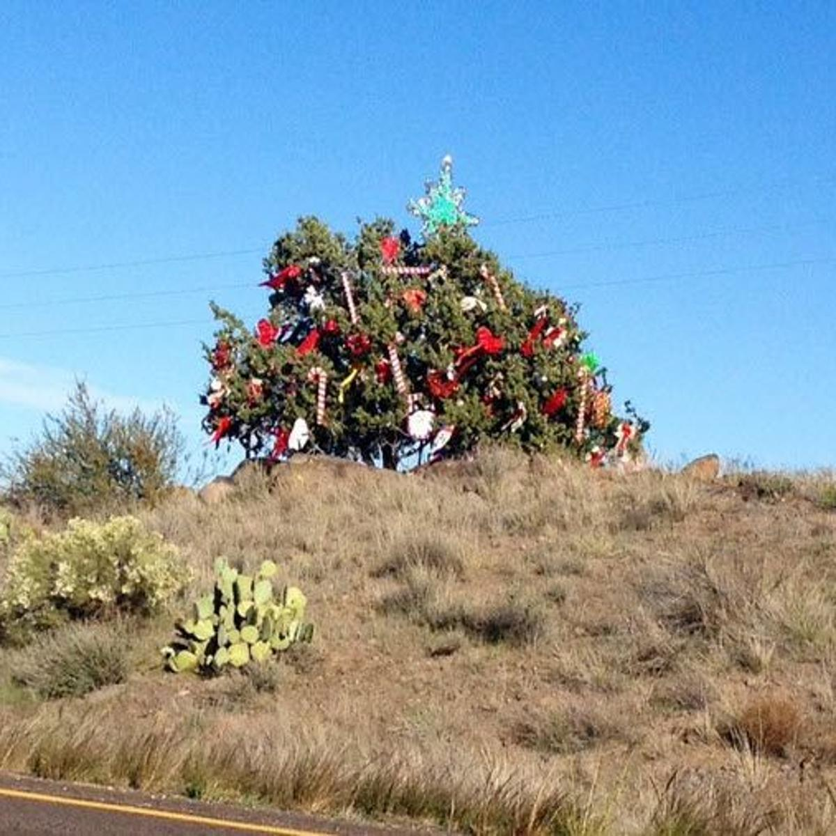 b059cc393b932 Santa's helpers decorate the 'mystery tree' at Sunset Point on I-17 ...