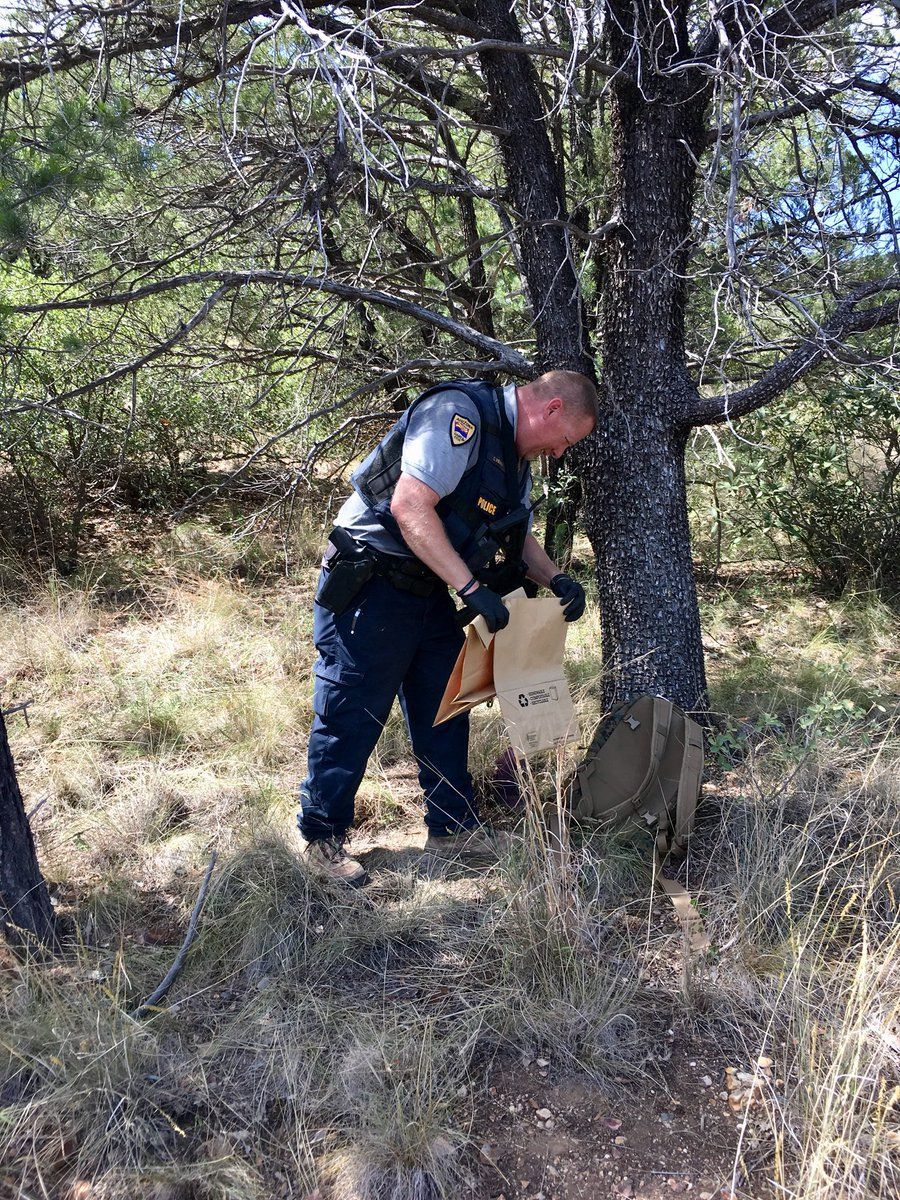 Bear On The Attack In Southern Arizona Victim Will Be Ok Archives Azfamily Com