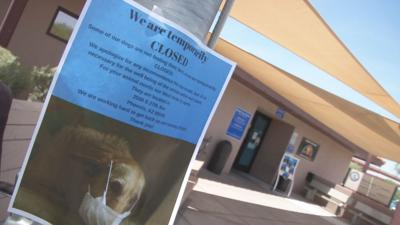 Maricopa County animal shelter quarantine extended, 37 dogs euthanized