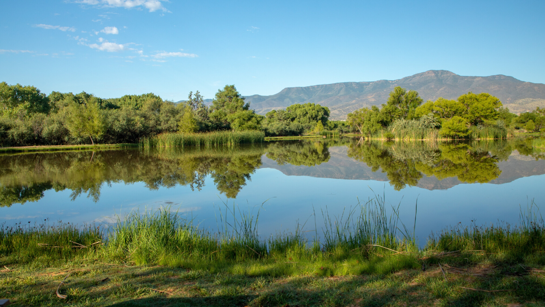 Arizona state park getaways that will help you get some fresh air