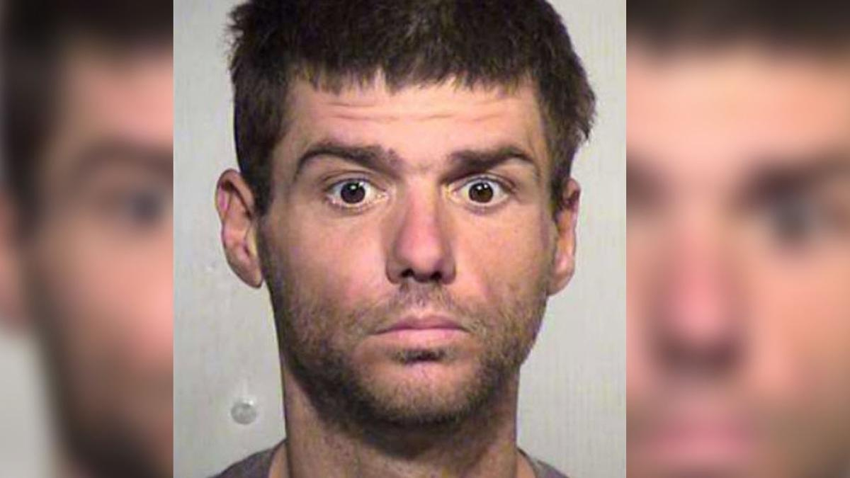 Man accused of slicing 50+ cacti with machete