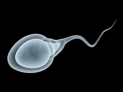 Does COVID-19 impact male fertility? Experts urge caution about new evidence