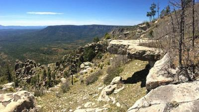Coconino NF reopens