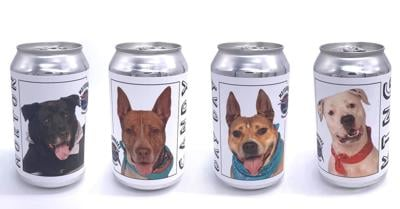 This Florida brewery is putting photos of adoptable dogs on beer cans to find them homes