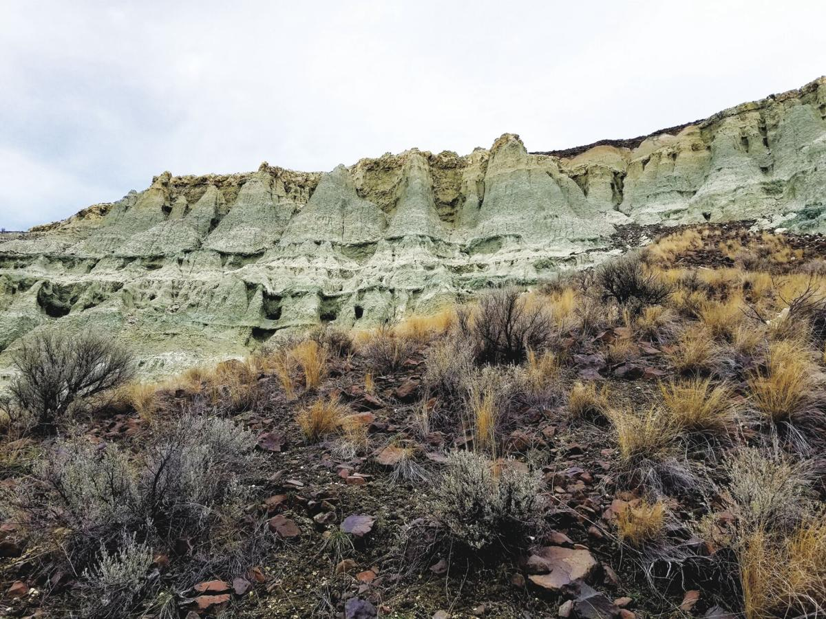 Fossil Beds 3.jpg