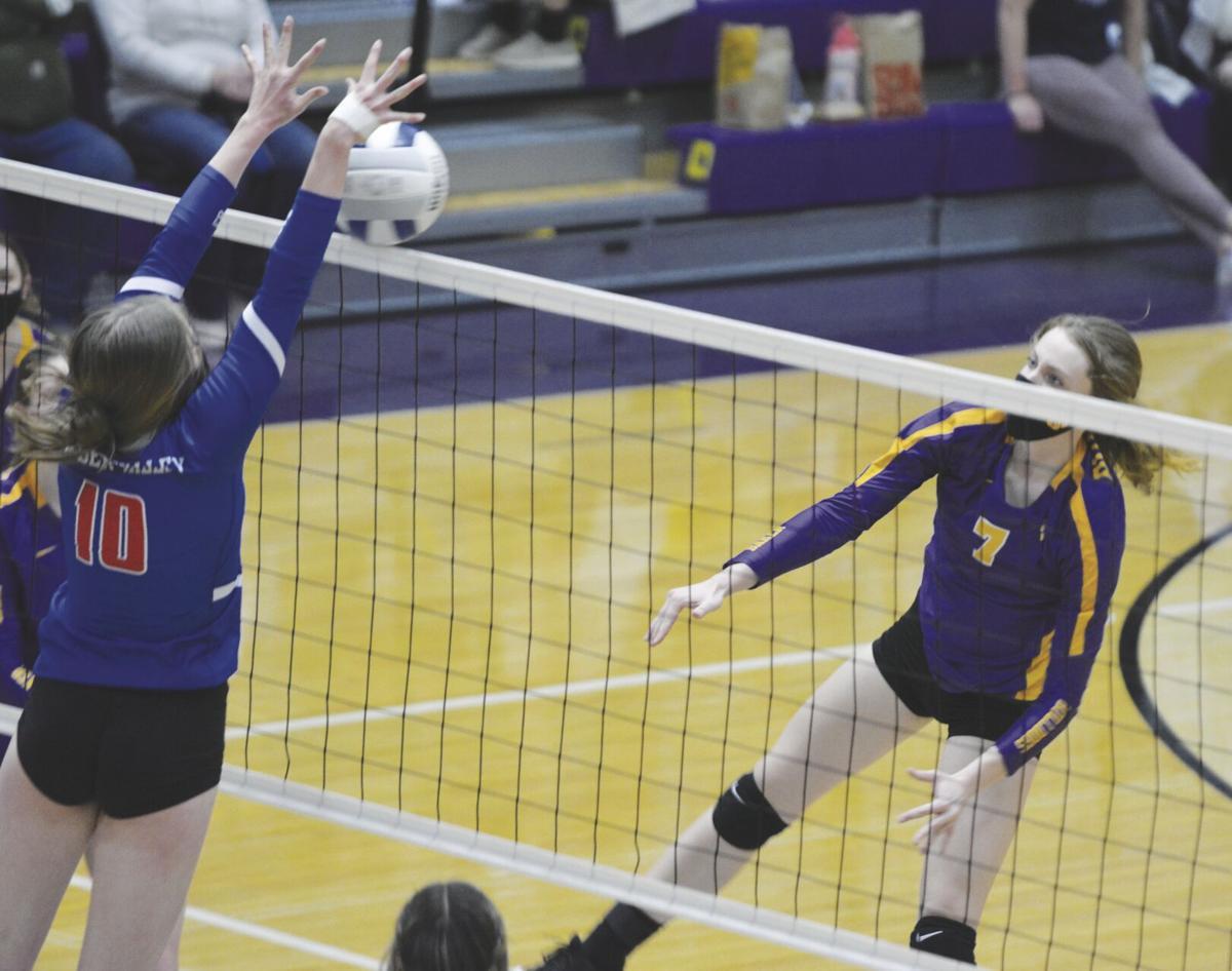 Volleyball 1.jpg