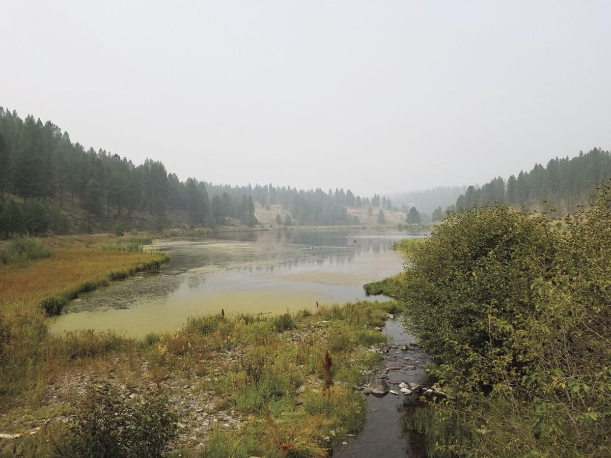 Bates state park.jpg
