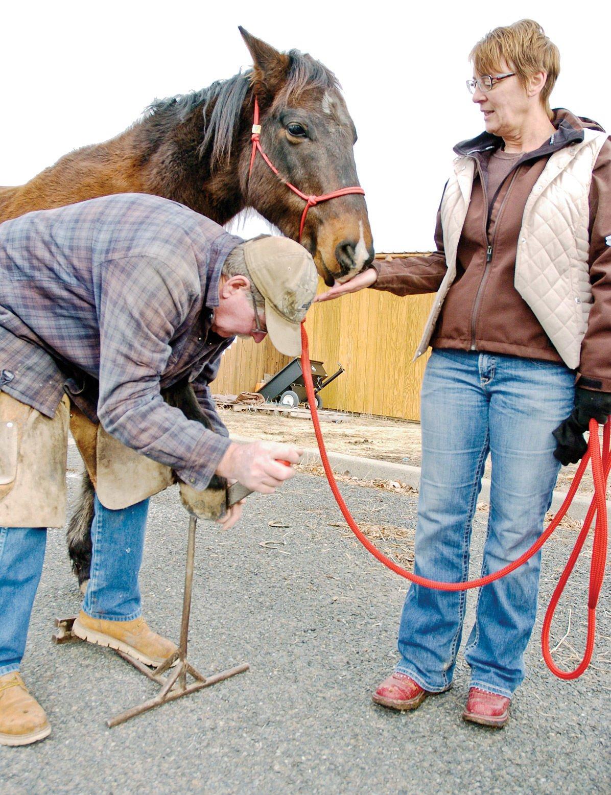 010320-NS_Horse-Norm-Trio-38_jc.jpg