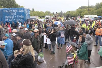 #TimberUnity protest