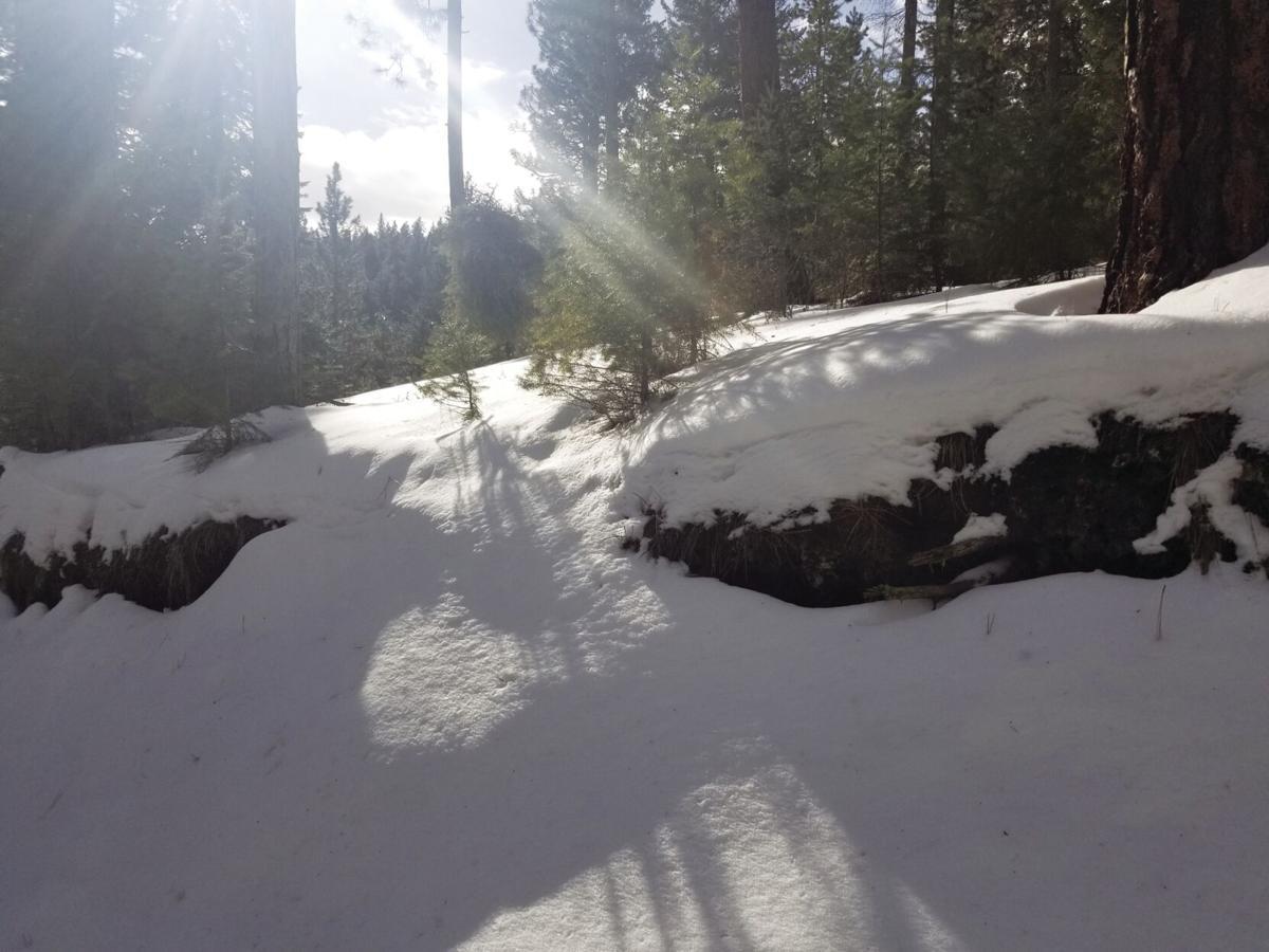 Snowpack 1.jpg