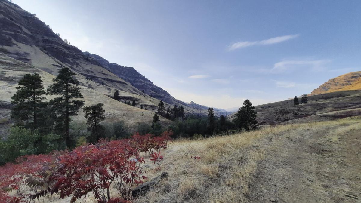 BMT - Hells Canyon - Renee Patrick.jpg