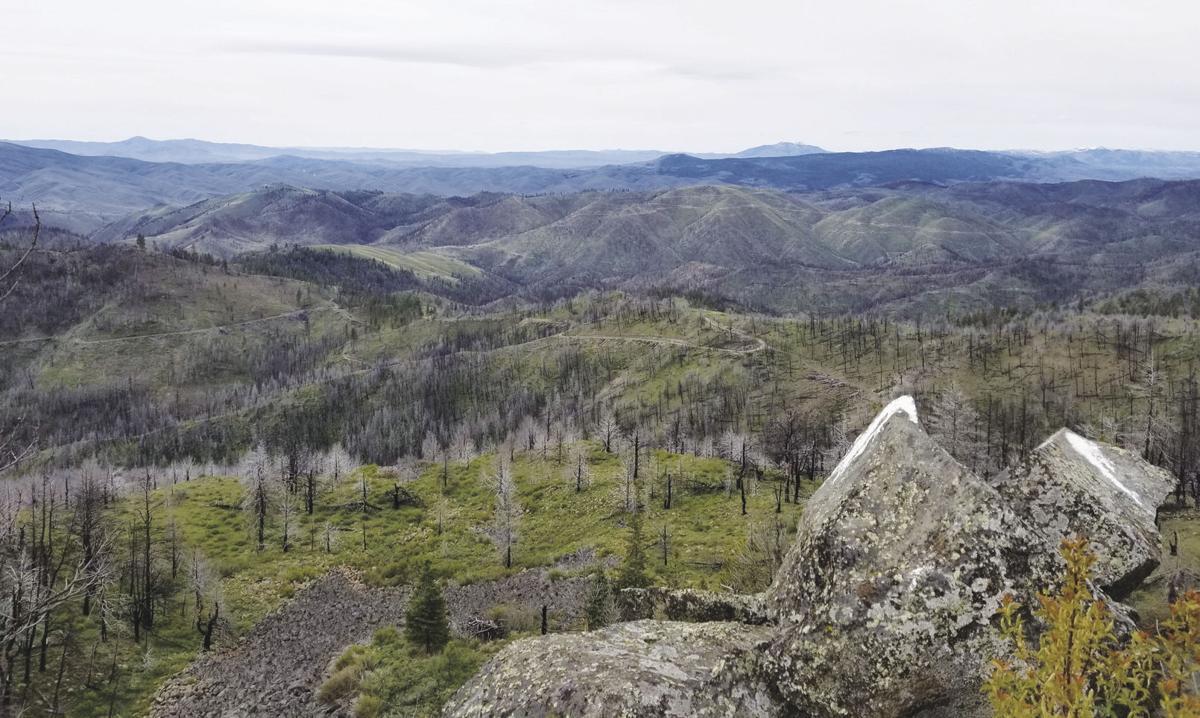 Stump Spring Butte.jpg