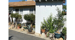 $10,000 unfurnished inside and out. $12,000 fully furnished inside and